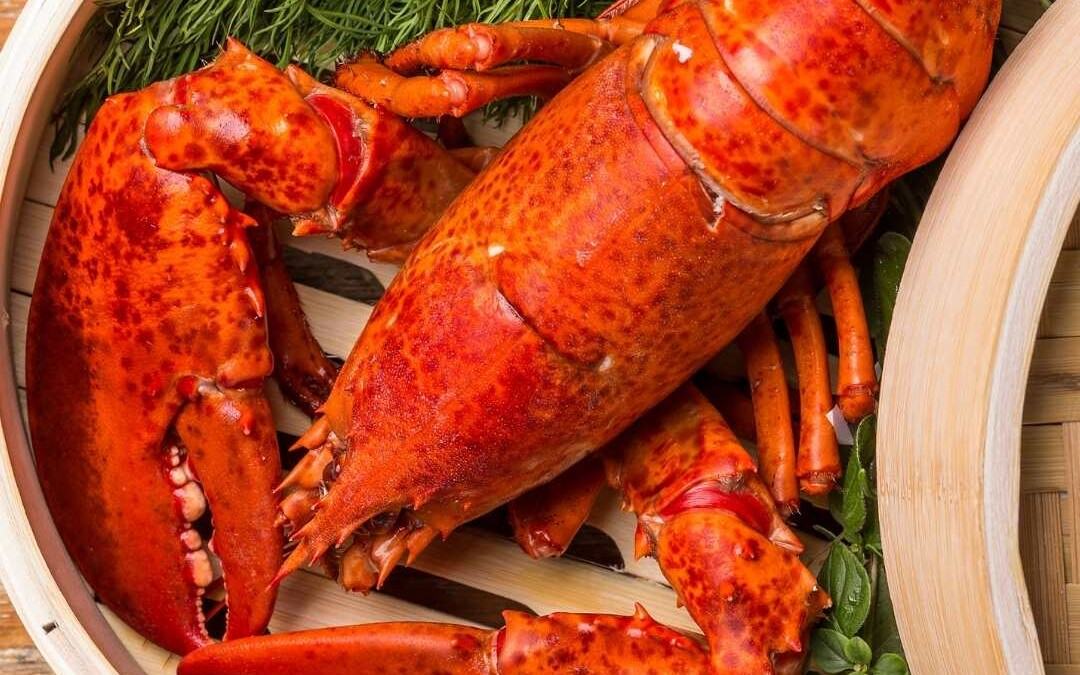 Lobster Cooking Guide